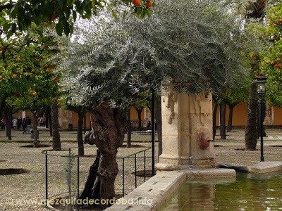 La Fuente del Olivo de la mezquita de Córdoba